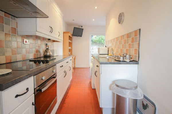 Driftwood at Widemouth Bay Details