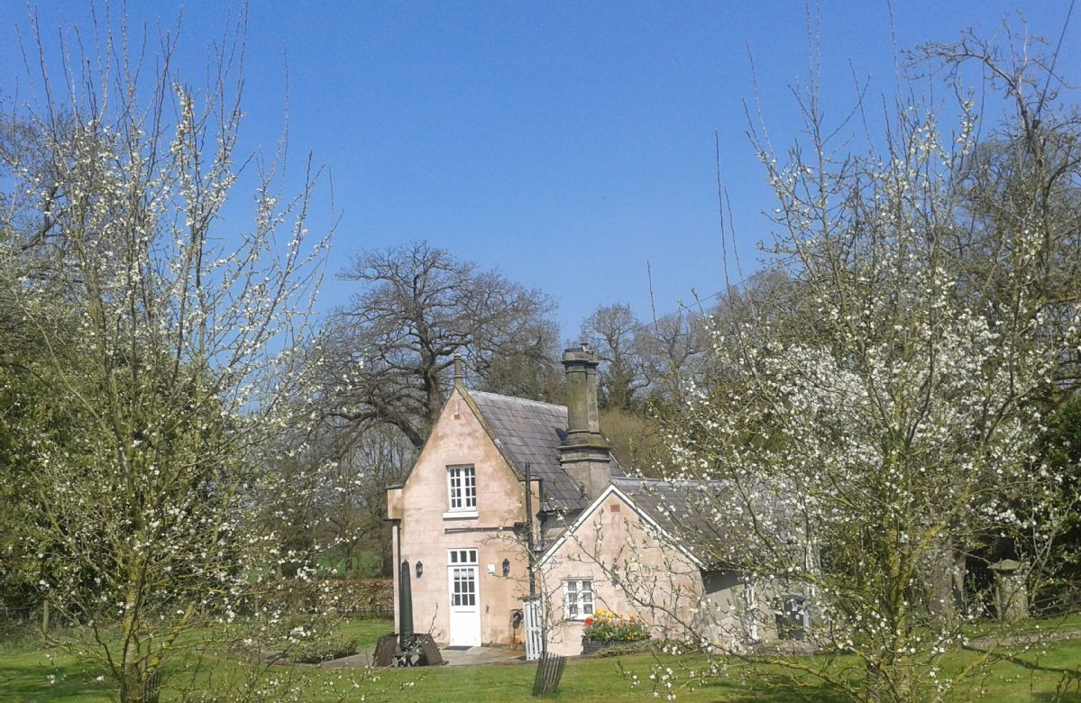 Click here for more about Stone Lodge