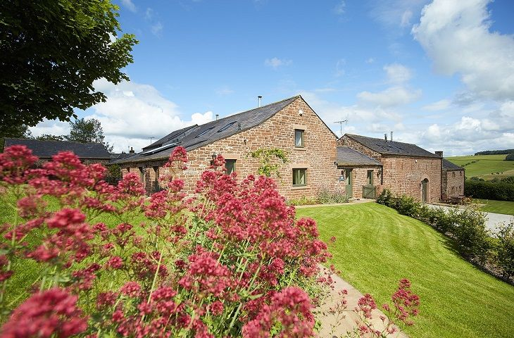 Click here for more about Jenny's Croft