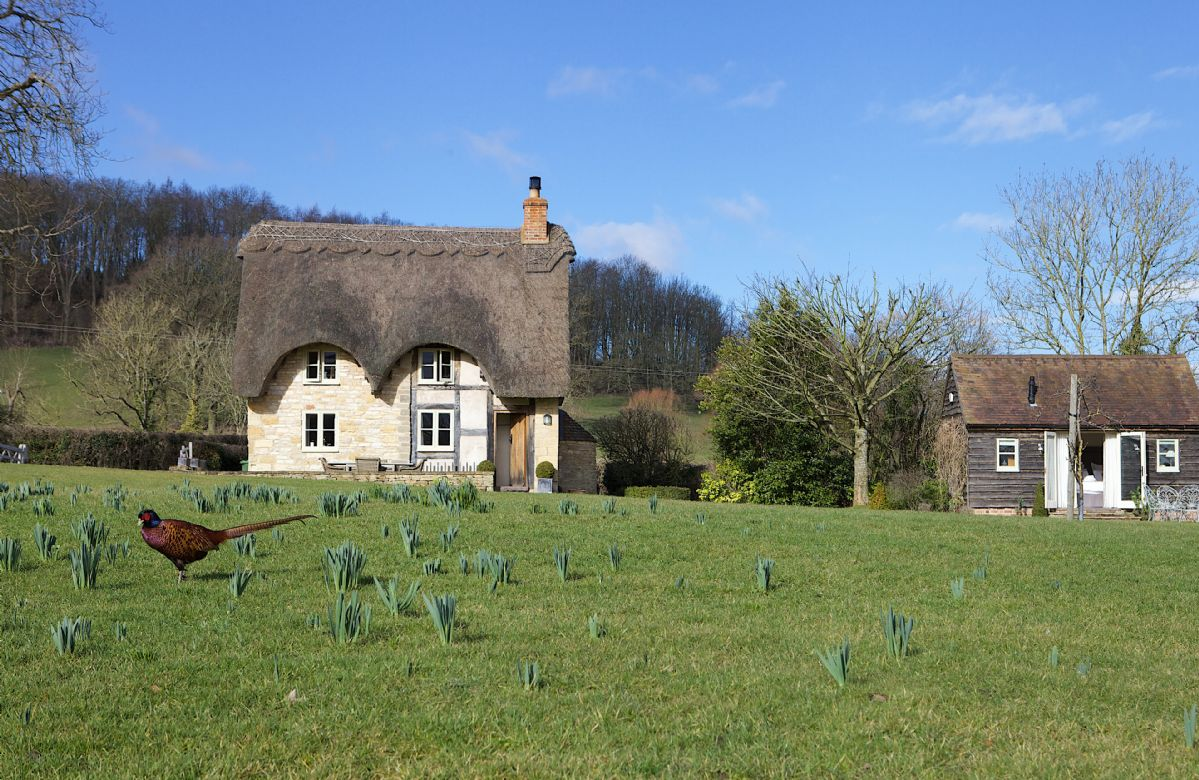 Click here for more about Field Cottage